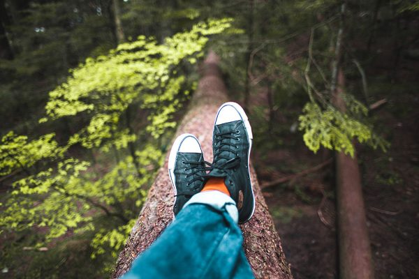 Understanding the connection between mental wellbeing and green space